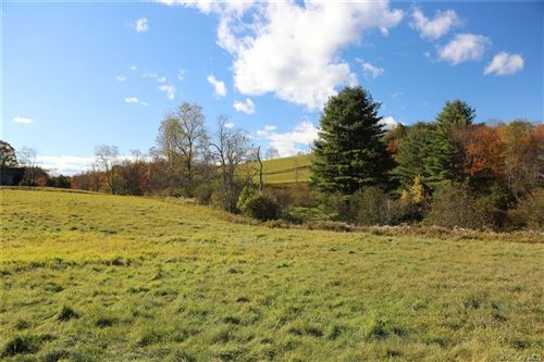 Photo of Lot 4 Laird Road, Bethel, NY 12720 (MLS # H6076773)