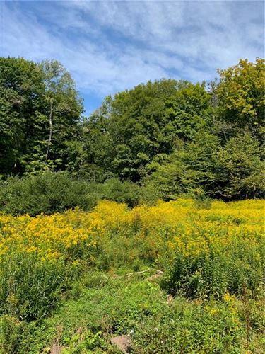 Tiny photo for 00 Dutch Hill Road, Roscoe, NY 12776 (MLS # H6050790)