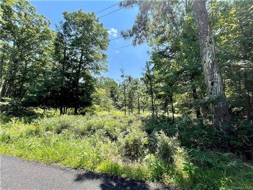 Photo of Kingfisher & Junco Trail, Wurtsboro, NY 12790 (MLS # H6103793)