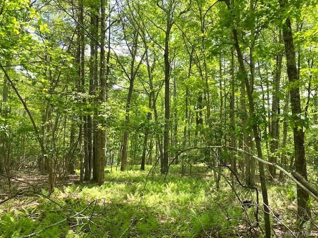 Photo for Brookside Drive, Glen Spey, NY 12737 (MLS # H6087793)