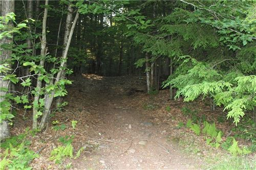 Photo of Muthig Road Tr 79, Fallsburg, NY 12733 (MLS # H6050798)