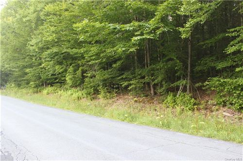 Tiny photo for Muthig Road Tr 79, Fallsburg, NY 12733 (MLS # H6050798)