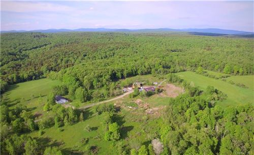 Photo of 62 Fishman Road, Parksville, NY 12768 (MLS # H6121802)