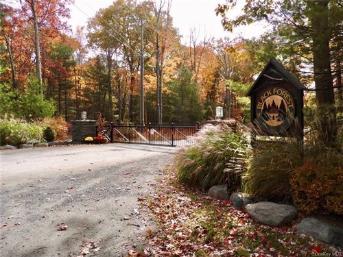 Photo of Black Forest Road Road, Glen Spey, NY 12737 (MLS # H6084810)