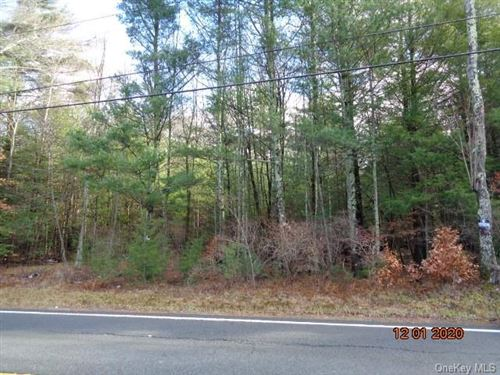 Tiny photo for Old Liberty Road, Monticello, NY 12701 (MLS # H6085818)