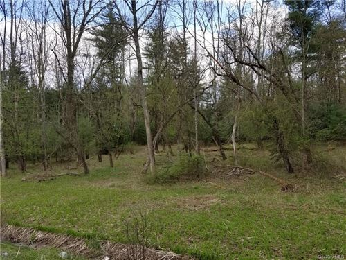 Tiny photo for Nys Hwy 17B & Sgt. Andrew Brucher Road, White Lake, NY 12786 (MLS # H6082828)