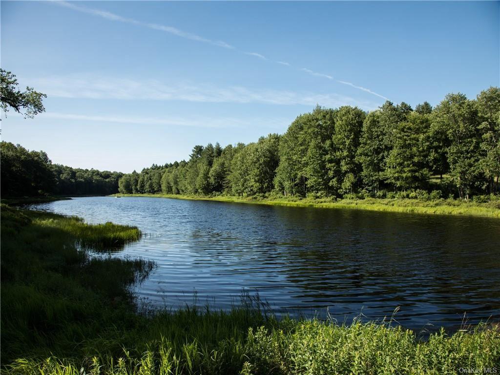 Photo for 37 John Bishop Road, Swan Lake, NY 12783 (MLS # H6069844)
