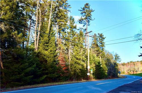 Tiny photo for 753 Cooley Road, Parksville, NY 12768 (MLS # H6085859)