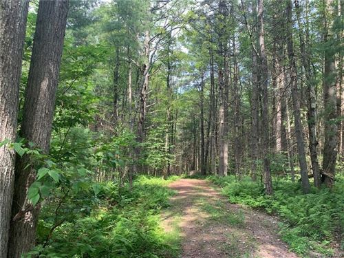 Tiny photo for Lot 13 Woodstone Trail, Bethel, NY 12720 (MLS # H6080871)