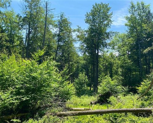 Tiny photo for State Rt 52, Swan Lake, NY 12754 (MLS # H6105876)
