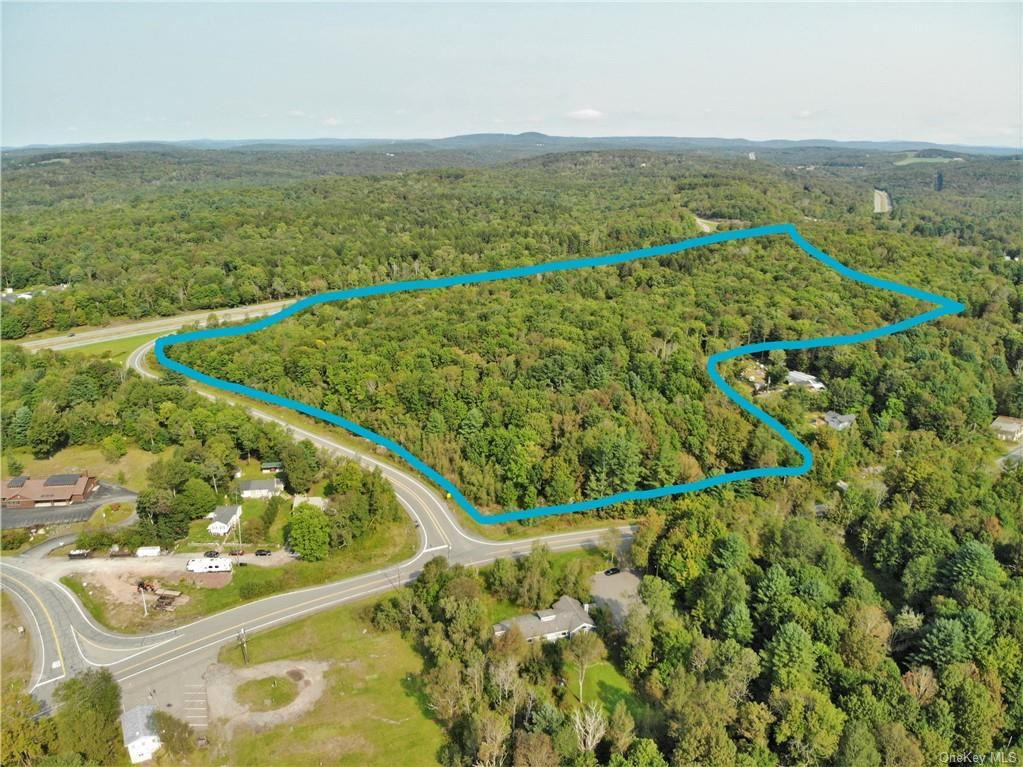 Photo for Nys Rt 17 And Old Rt 17, Harris, NY 12742 (MLS # H6099876)