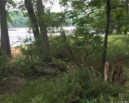Photo of 125 (11.-1-73.5) Airport Road, Eldred, NY 12528 (MLS # H6098877)