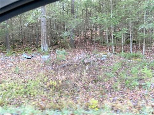 Tiny photo for State Route 55, Eldred, NY 12732 (MLS # H6082893)