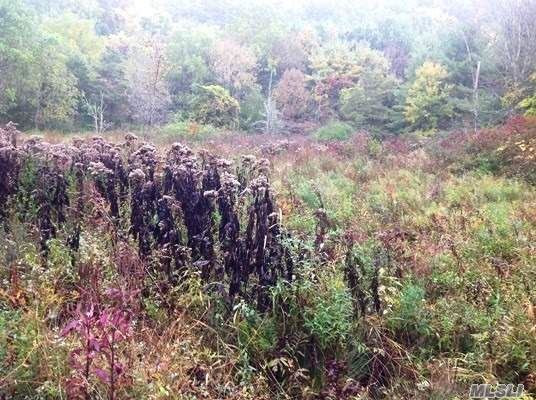 Lot #5 Biers Road, Out Of Area Town, NY 12046 - MLS#: 3145914