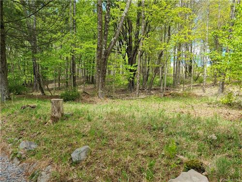 Tiny photo for 5101 State Route 55, Ferndale, NY 12734 (MLS # H6040924)