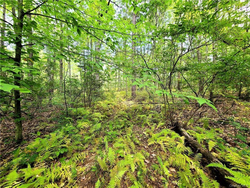 Photo for 37 Trillium Trail, Cochecton, NY 12726 (MLS # H6073926)