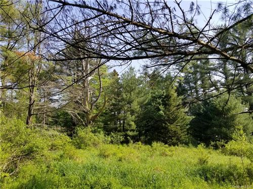 Tiny photo for Sgt. Andrew Brucher And Rt. 17B, Smallwood, NY 12778 (MLS # H6103931)