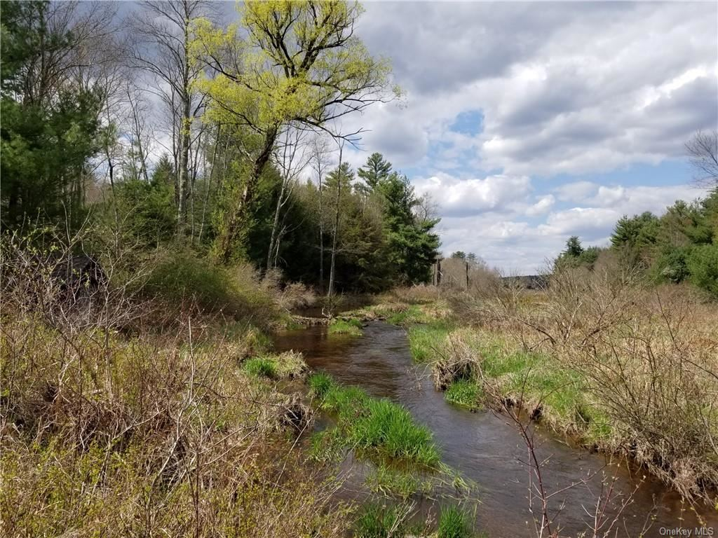 Photo for Sgt. Andrew Brucher And Rt. 17B, Smallwood, NY 12778 (MLS # H6103931)