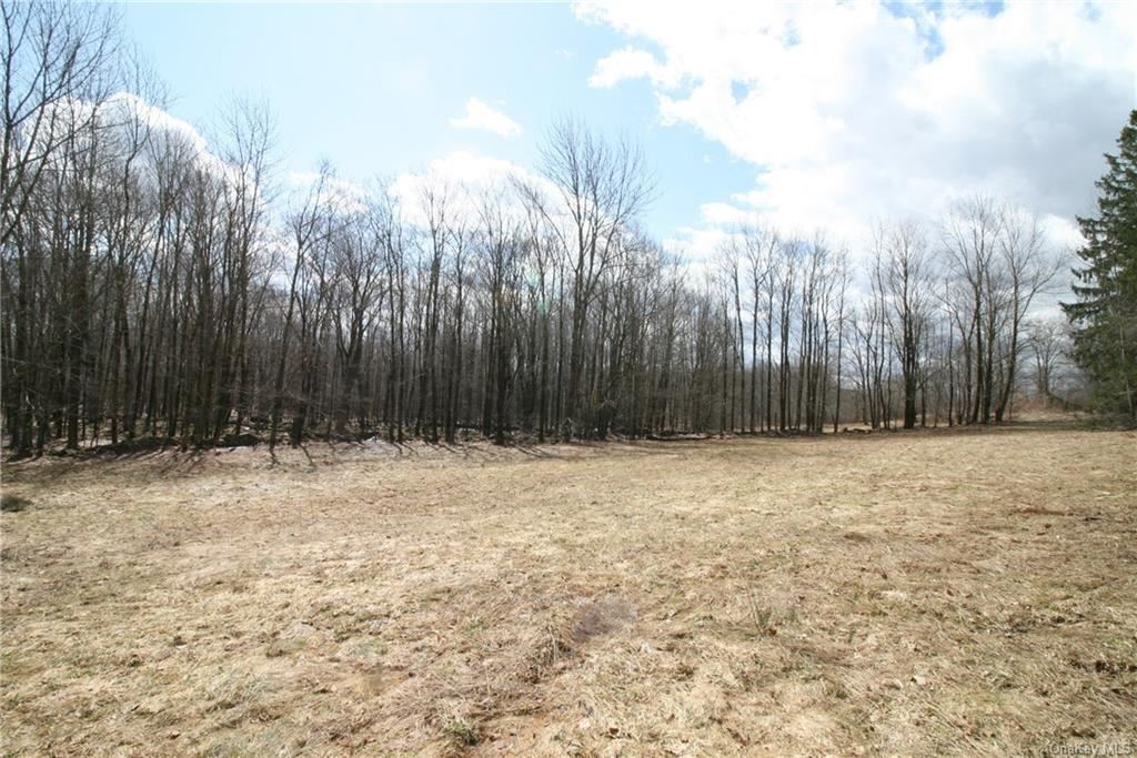Photo for Terwilliger Road, Livingston Manor, NY 12758 (MLS # H6104944)