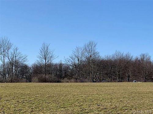 Tiny photo for Stump Pond Road, Livingston Manor, NY 12758 (MLS # H6104955)
