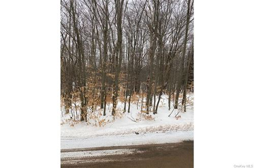 Photo of Cattail Road, Livingston Manor, NY 12758 (MLS # H6096960)