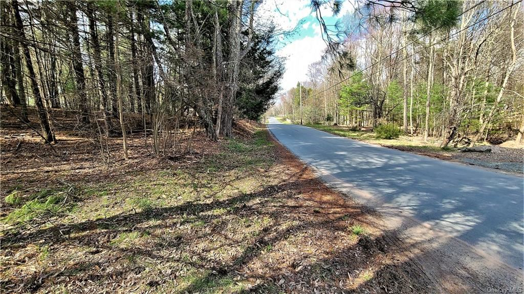 Photo for Lakeview And Pine Grove Road, Smallwood, NY 12778 (MLS # H6110983)