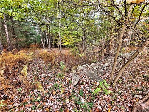 Tiny photo for *000* Soule Road, Swan Lake, NY 12783 (MLS # H6079991)