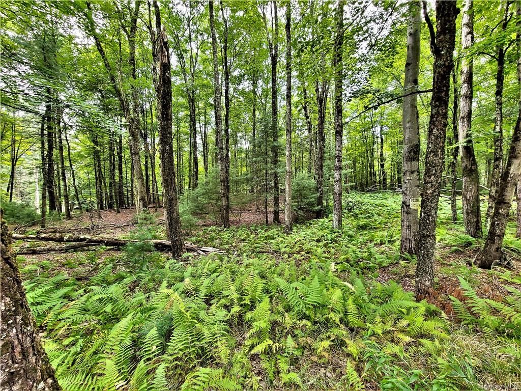 Photo for ** Old Tacy Road, Swan Lake, NY 12720 (MLS # H6061993)