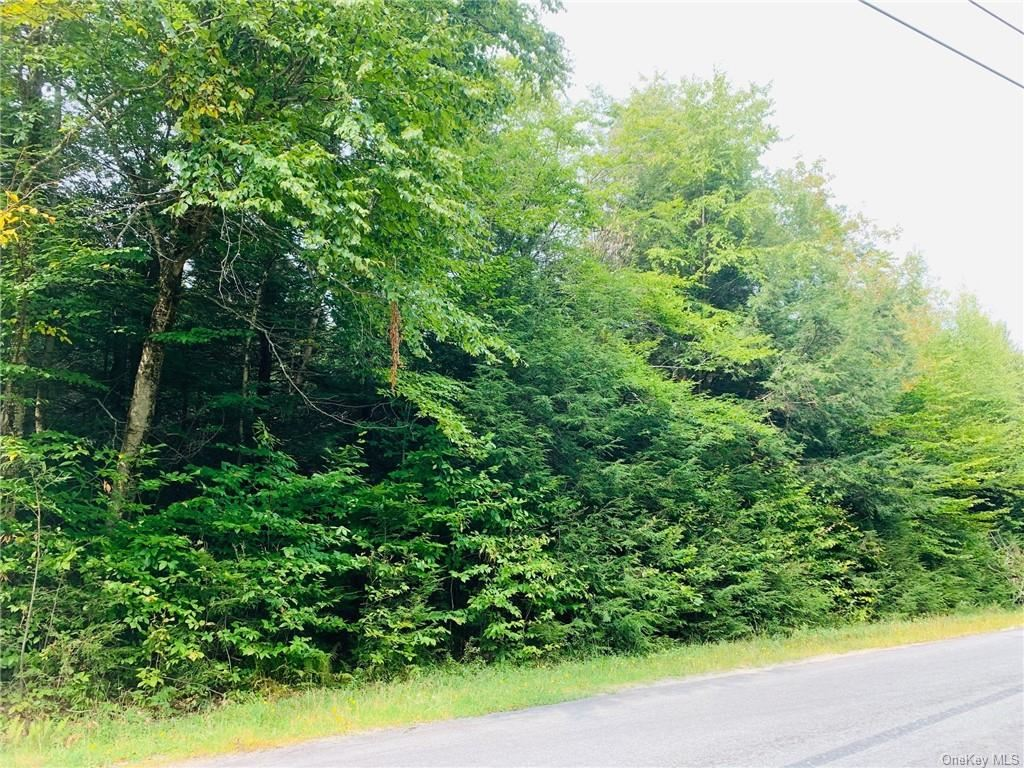 Photo for 0 Breezy Hill Road, Parksville, NY 12768 (MLS # H6070999)
