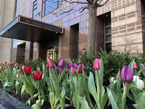 Photo of 161 E Chicago Avenue #29F, Chicago, IL 60611 (MLS # 11001006)