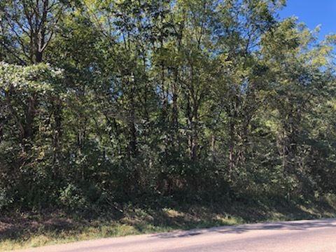 Photo of LOT 586 Lake Thunderbird Drive, Putnam, IL 61560 (MLS # 11238006)