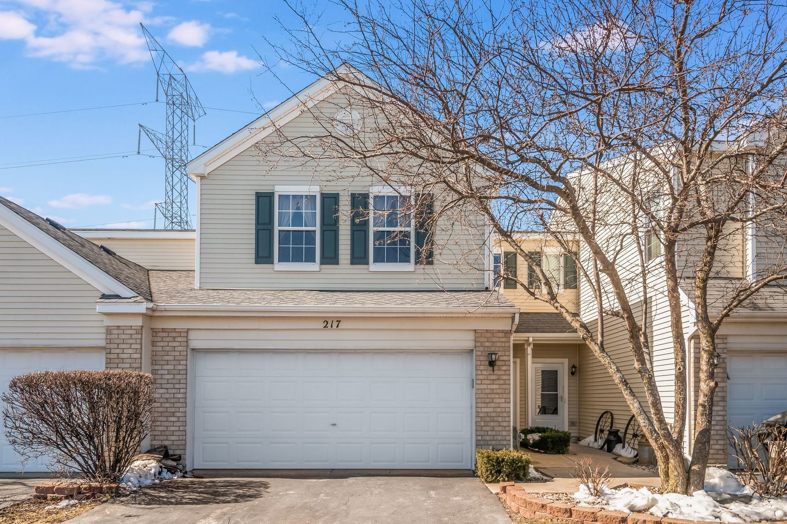 Photo of 217 Parkside Drive #217, Shorewood, IL 60404 (MLS # 11011014)
