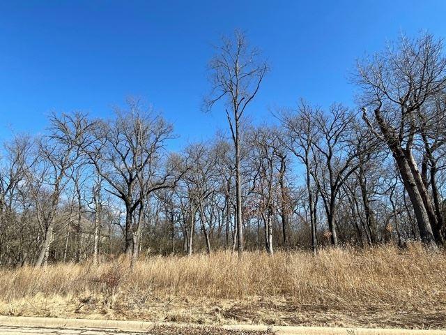 806 Ridgeway Trail, McHenry, IL 60050 - #: 11018116