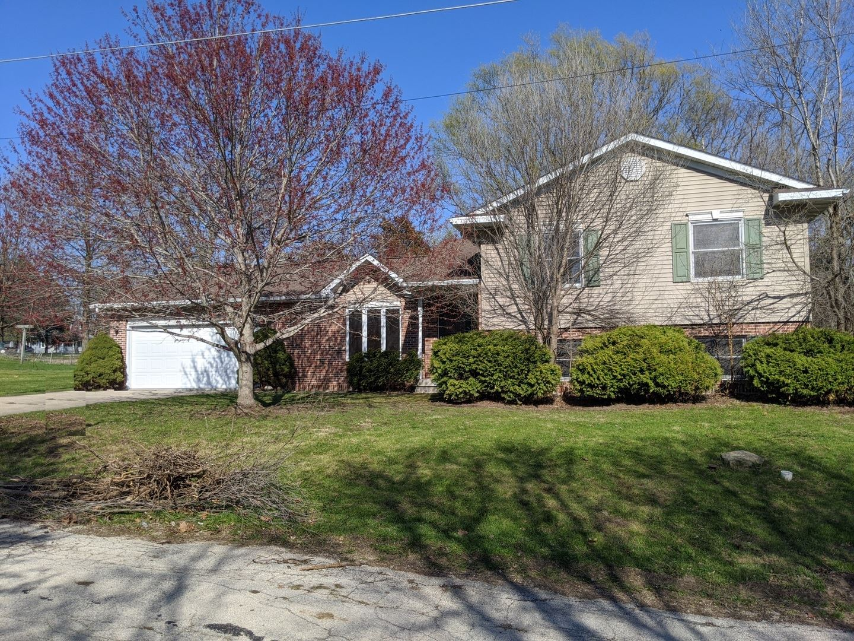 114 S King Street, Mount Carroll, IL 61053 - #: 10600118