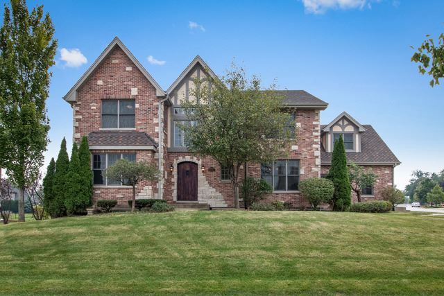 9835 Folkers Drive, Frankfort, IL 60423 - #: 10643167