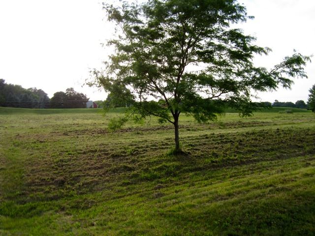 Lot 59 Madeline Drive, Yorkville, IL 60560 - #: 10615174