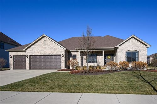Photo of 13212 Wildwood Place, Plainfield, IL 60585 (MLS # 10618272)