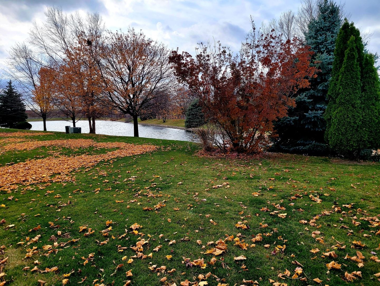 Photo of 332 Wedgewood Circle, Romeoville, IL 60446 (MLS # 10932279)