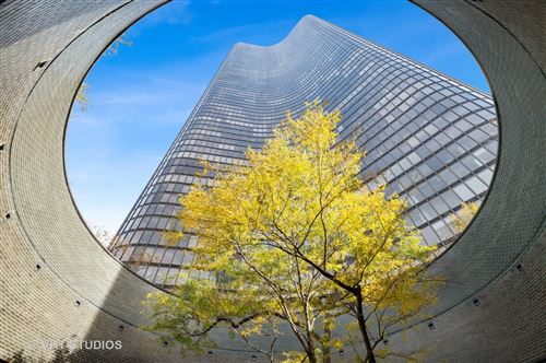 Photo of 505 N LAKE SHORE Drive #5806, Chicago, IL 60611 (MLS # 10921286)