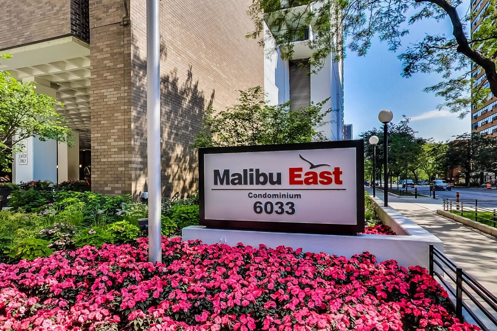 6033 N Sheridan Road #45D, Chicago, IL 60660 - #: 11251297