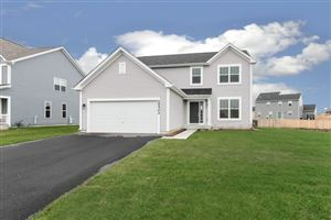 Photo of 26502 West Wild Rose  Lot#583 Drive, CHANNAHON, IL 60410 (MLS # 10332309)