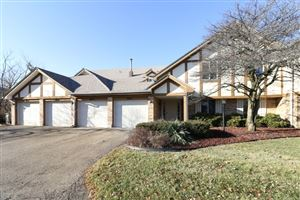 Photo of 9039 West Somerset Court #7, ORLAND PARK, IL 60462 (MLS # 10172355)
