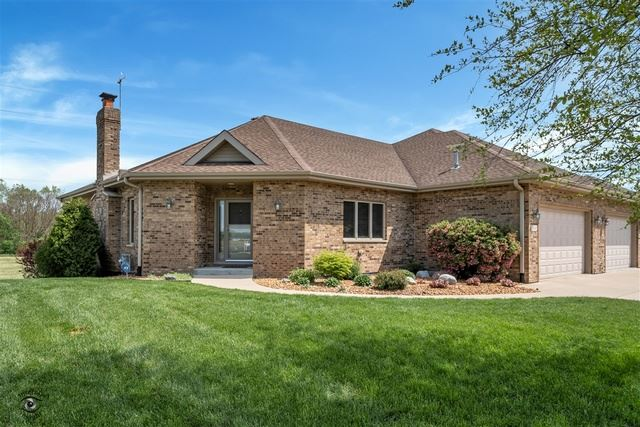 21542 NO WAKE Avenue, Wilmington, IL 60481 - #: 10718448
