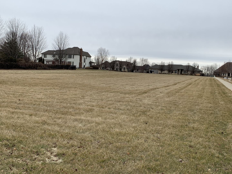 Photo of 25848 JULIE Court, Plainfield, IL 60544 (MLS # 10911473)
