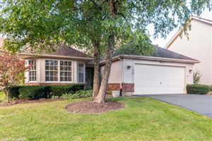Photo of 13458 Redberry Circle, Plainfield, IL 60544 (MLS # 10549489)