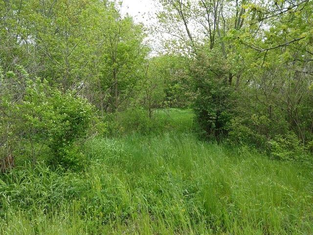 000 Hawthorn Road, Marengo, IL 60152 - #: 10897501