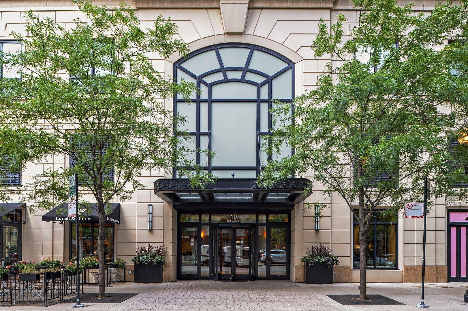 10 E Delaware Place #9C, Chicago, IL 60611 - #: 11132591