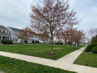 Photo of 28 Harmony Lane, Romeoville, IL 60446 (MLS # 11057593)