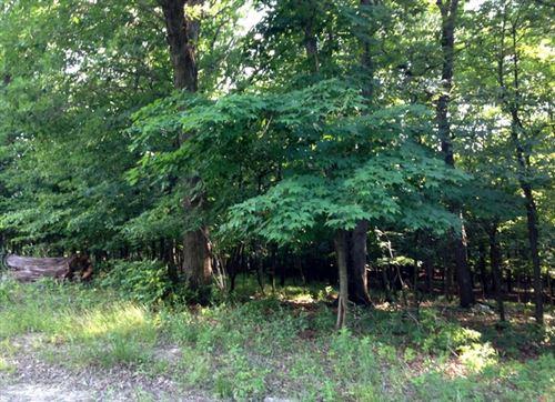 Photo of Lot 43 Eagle Chase Drive, Seneca, IL 61360 (MLS # 10607631)