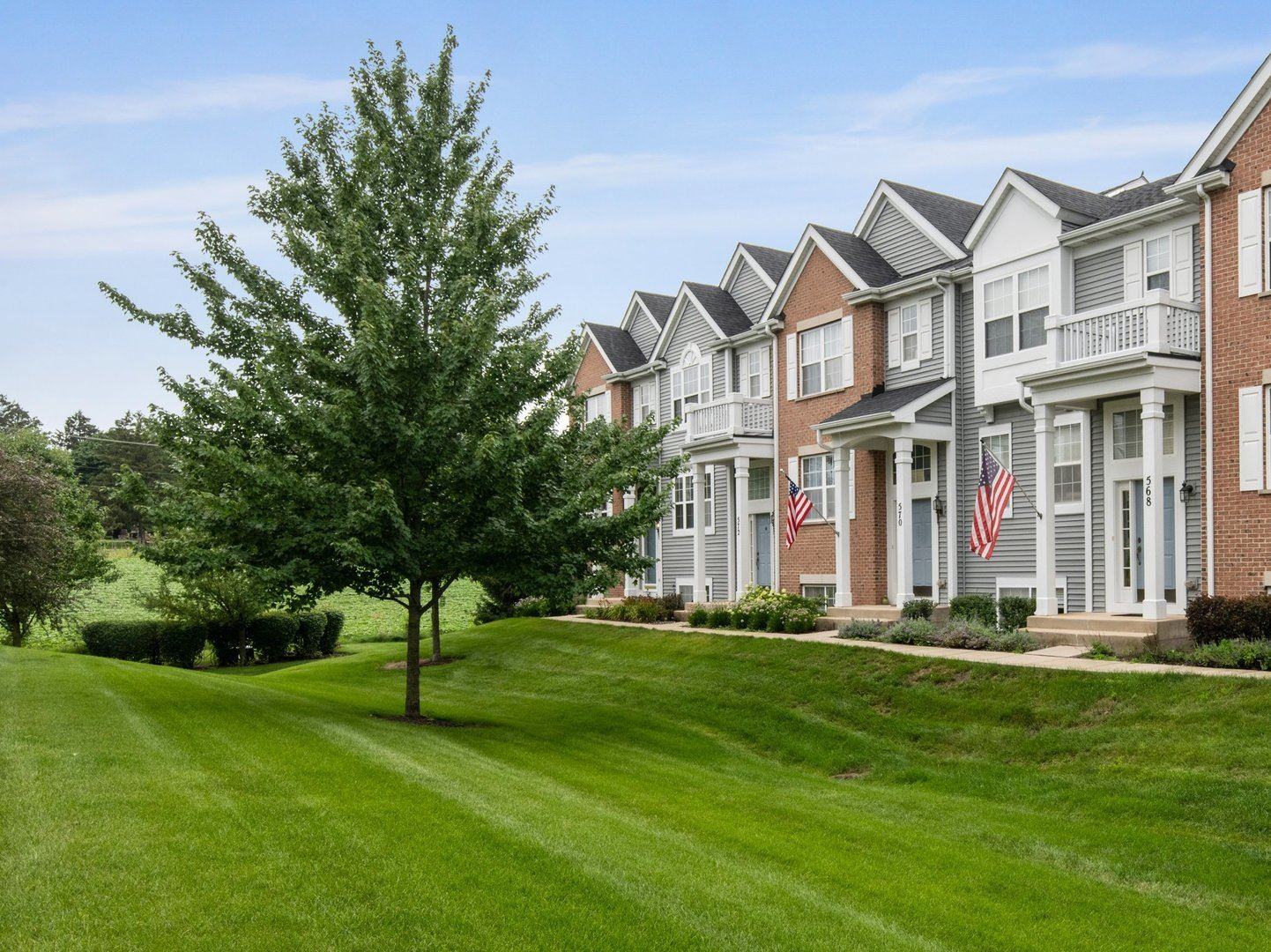 Photo of 572 Lincoln Station Drive #572, Oswego, IL 60543 (MLS # 11160636)